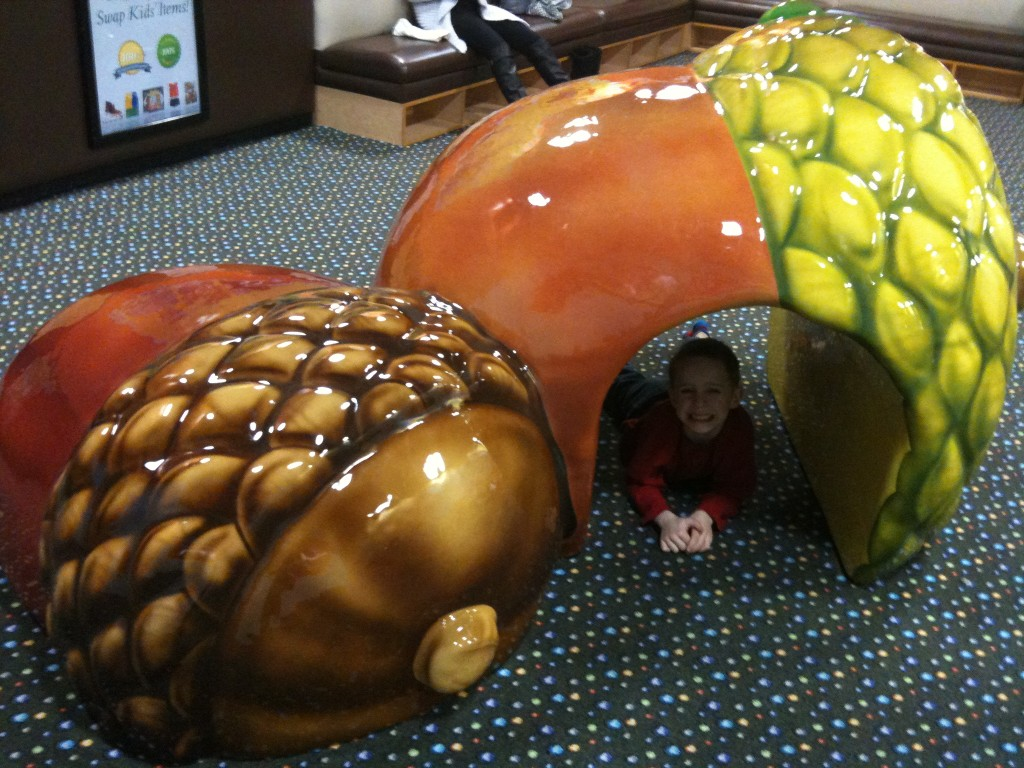 playzone acorns
