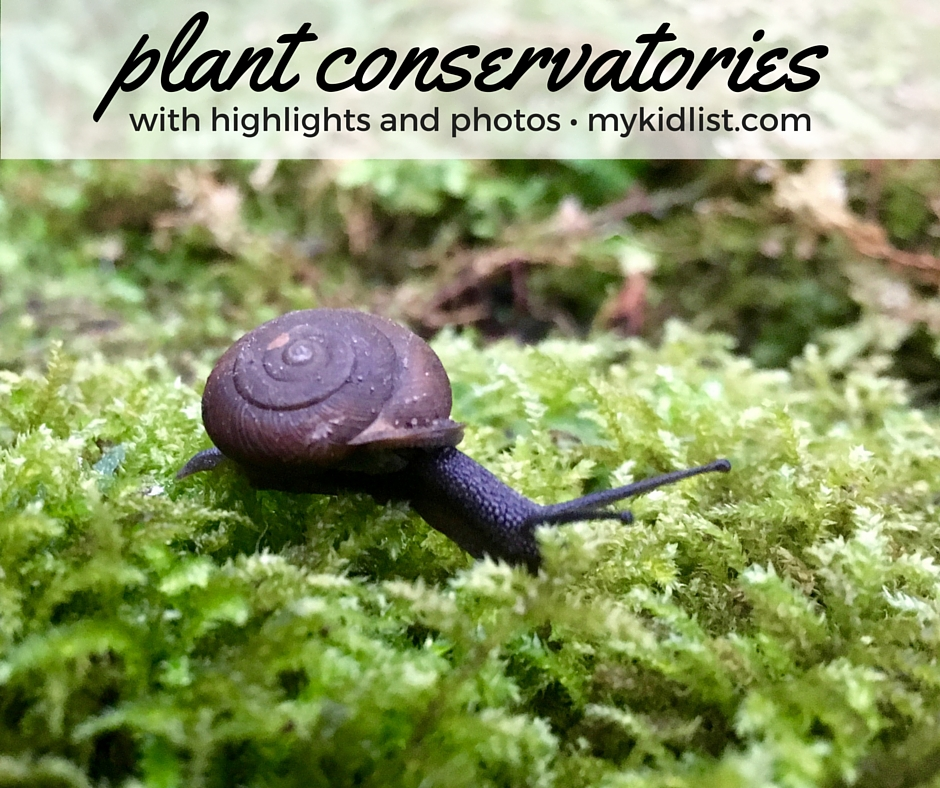 plant conservatories