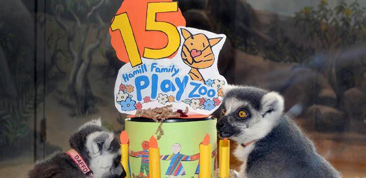 hamill family play zoo 15 year birthday
