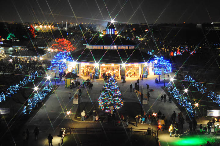 Brookfield Zoo is all lit up for its annual Holiday Magic.