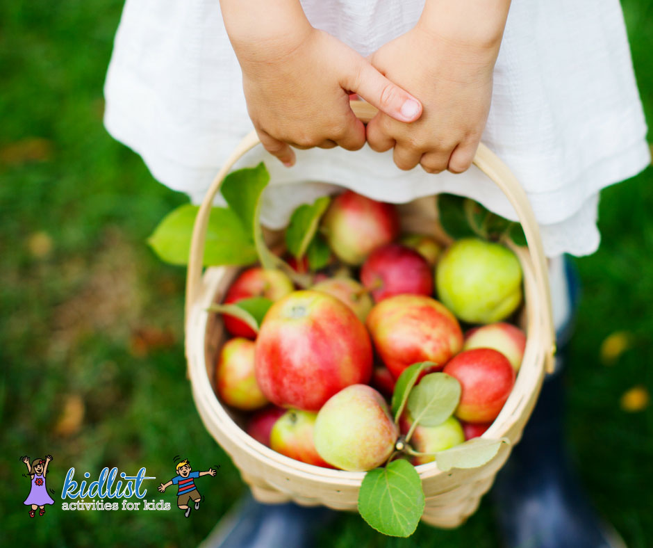 outdoor activities: fruit picking