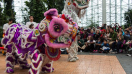 Chinese New Year celebration for kids at Navy Pier in Chicago